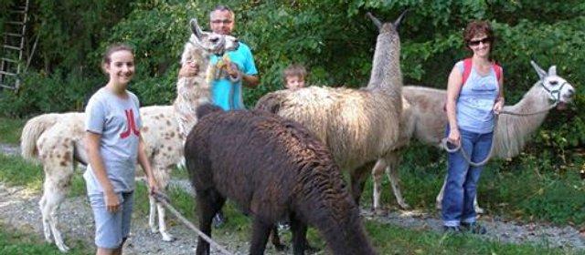 Familie bei Lamawanderung in Neusiedl bei Güssing