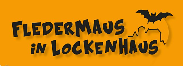 Fledermaus in Lockenhaus