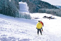 /niederoesterreich/waidhofen-ybbs/winter/schigebiet-forsteralm