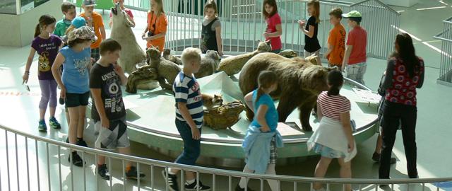 Kinder im Landesmuseum Niederösterreich