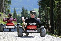 Abfahrt auf Mountaincarts von der Gemeindealpe in Mitterbach
