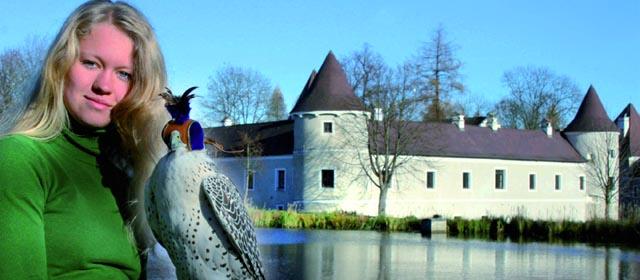 Greifvogelzentrum Schloss Waldreichs