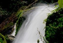 Lohnbachfall bei Pretrobruck bei Arbesbach