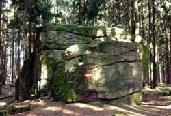/niederoesterreich/waidhofen-thaya/natur/familienwanderung-predigtstuhl