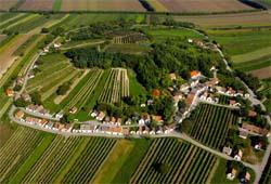 Kellergasse mit Weinkeller am Galgenberg