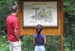/niederoesterreich/mistelbach/natur/waldlehrpfad-mistelbach
