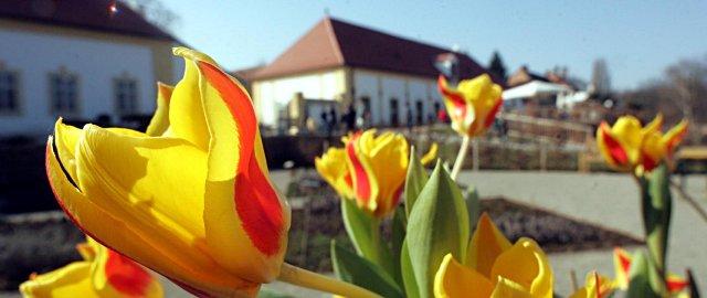 Ostermarkt Schloss Hof