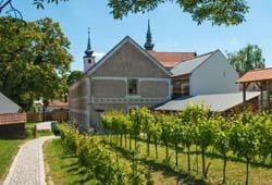 /niederoesterreich/mistelbach/museum-burgen/vino-versum-poysdorf-wein