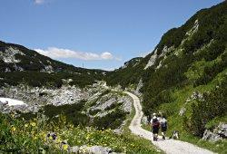 /oberoesterreich/gmunden/natur/dachstein-heilbronner-rundwanderweg