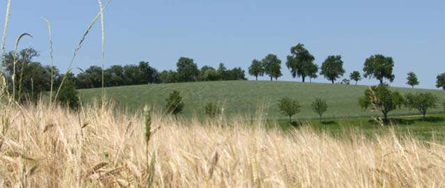 Naturpark Obst-Hügel-Land