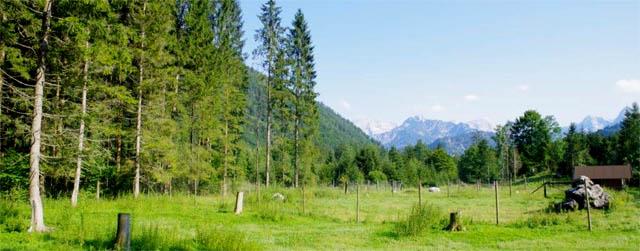 Panorama Wildpark Grünau