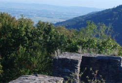 Ruine Stauf bei Haibach