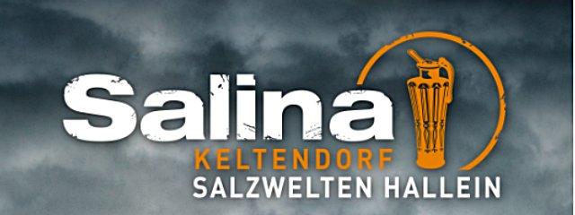 Keltendorf Salilna am Dürrnberg