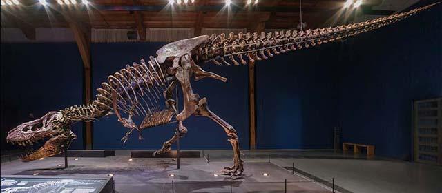 T-Rex auf Gut Aiderbichl