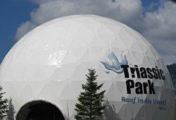 /tirol/kitzbuehel/tierpark/triassic-park-steinplatte-waidring
