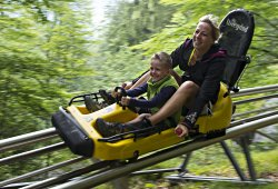 /vorarlberg/bludenz/sport-abenteuer/alpine-coaster-golm-montafon