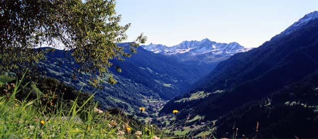 Landschaft im Silbertal