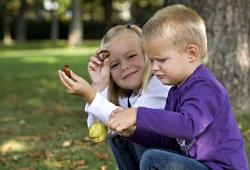 Kinder beim Kastanien sammeln im Lainzer Tiergarten