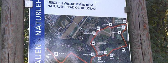 Naturlehrpfad Obere Lobau in Wien