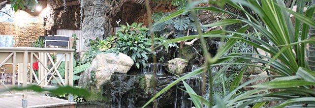 Palmenhaus in den Blumengärten Hirschstetten in Wien
