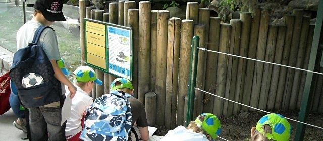 Schulausflug in den Tiergarten Schönbrunn in Wien